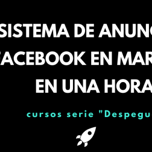 Tu sistema de anuncios en Facebook en marcha en una hora